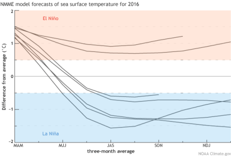 """Forecasts from seven climate models for the 3-month-mean average sea surface temperature anomalies in the Niño3.4 region (Oceanic Niño Index). The first 3-month-mean period shown is March—May 2016, """"MAM""""; the last is December 2016—February 2017. Model data from the North American Multi-Model Ensemble (NMME). Climate.gov figure. Click for large image."""