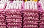 egg imports south korea