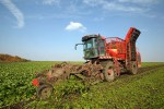 usda crop production