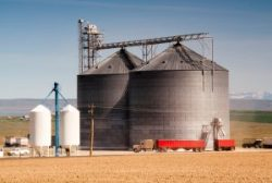 Agricultural Silo Loads Semi Truck With Farm Grown Food Grain-fuel