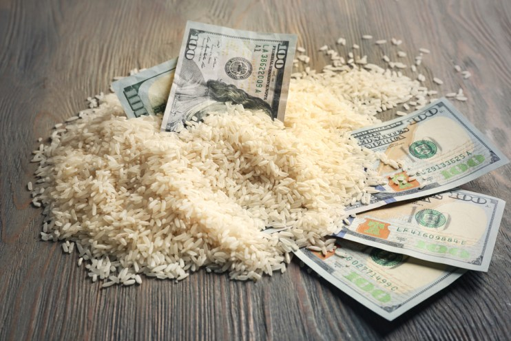 California rice