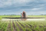 Tractor spraying-atrazine
