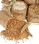grains crop