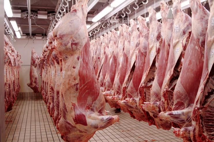 harris ranch beef