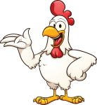 Cartoon white chicken.