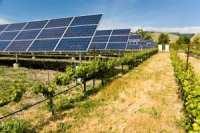 solar-photo-voltaic-collectors-powering-a-california-vineyard energy efficiency