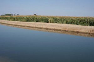 Friant-Kern Canal Issues