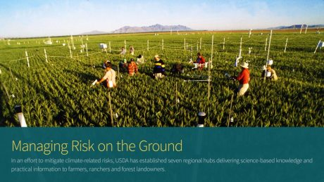 USDA Agricultural Research Service (ARS) scientists measure the growth of wheat surrounded by elevated levels of atmospheric carbon dioxide near Phoenix, AZ. The Free Air Carbon Dioxide Enrichment (FACE) study's goal is to measure carbon dioxide's effect on plants. It is the largest experiment of this type ever undertaken.
