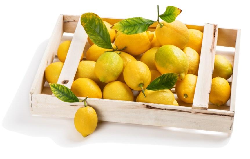 importing lemons