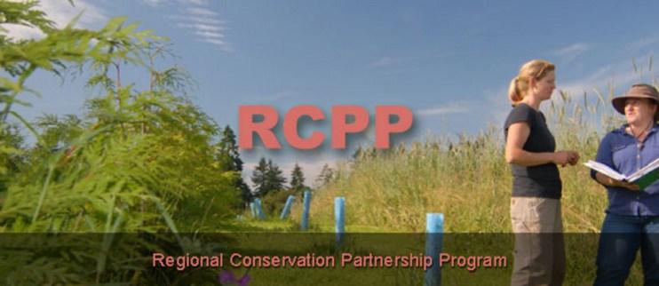 Regional Conversation Partnership Program