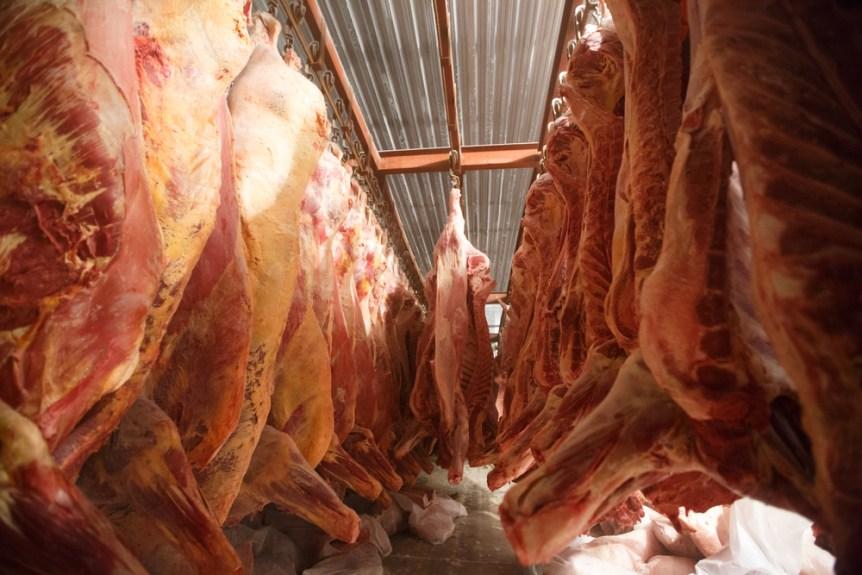 global beef