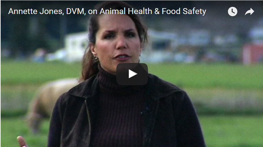 Annette Jones, DVM, on Animal Health & Food Safety