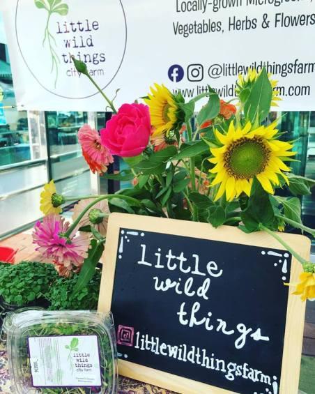 Little Wild Things Farm