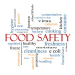 Food Safety Word Cloud Concept with great terms such as hazards, e coli, cooking and more.