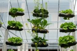 Vertical Garden Ideas ad creative diy vertical gardens for your home Vertical Garden Ideas