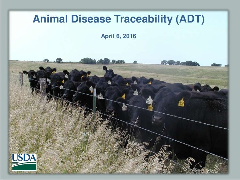Animal Disease Traceability