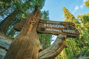 Boundary, Sequoia National Park in California