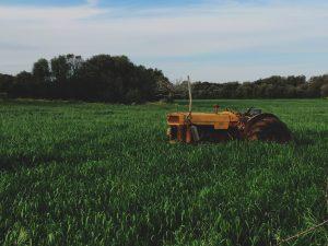 farm bill expiration