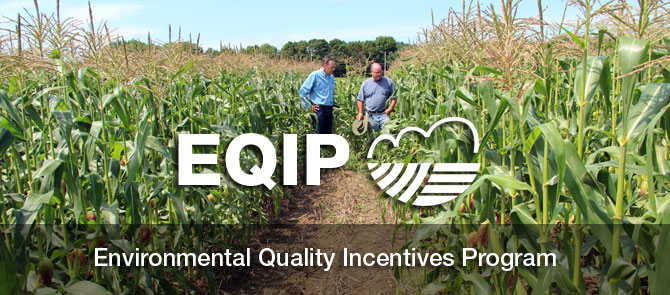 EQIP Funding Continues Even Without A Farm Bill in Place