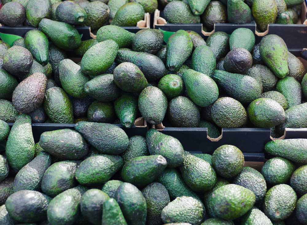 California Avocados Delicate Relationship With NAFTA