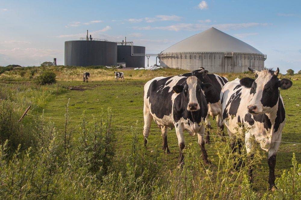 CDFA Announces Funding for Dairy Digester Development Program