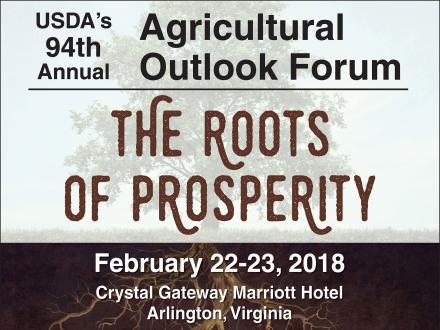 outlook forum