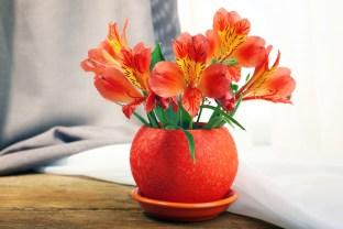 Beautiful alstroemeria in a pot.