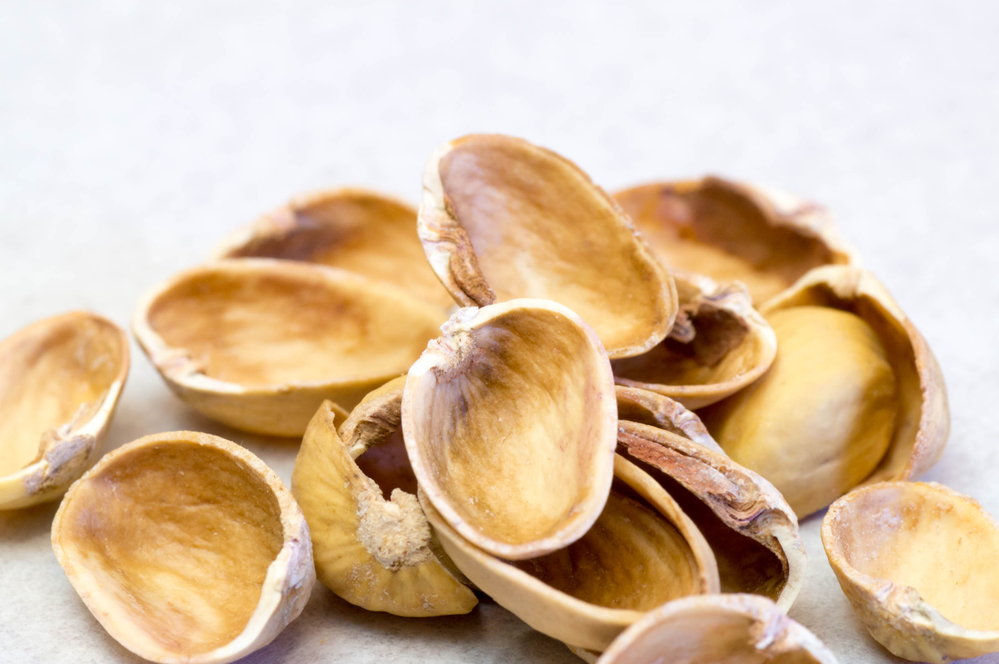 Why You Should Recycle Pistachio Shells