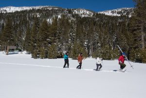 Third Snow Survey