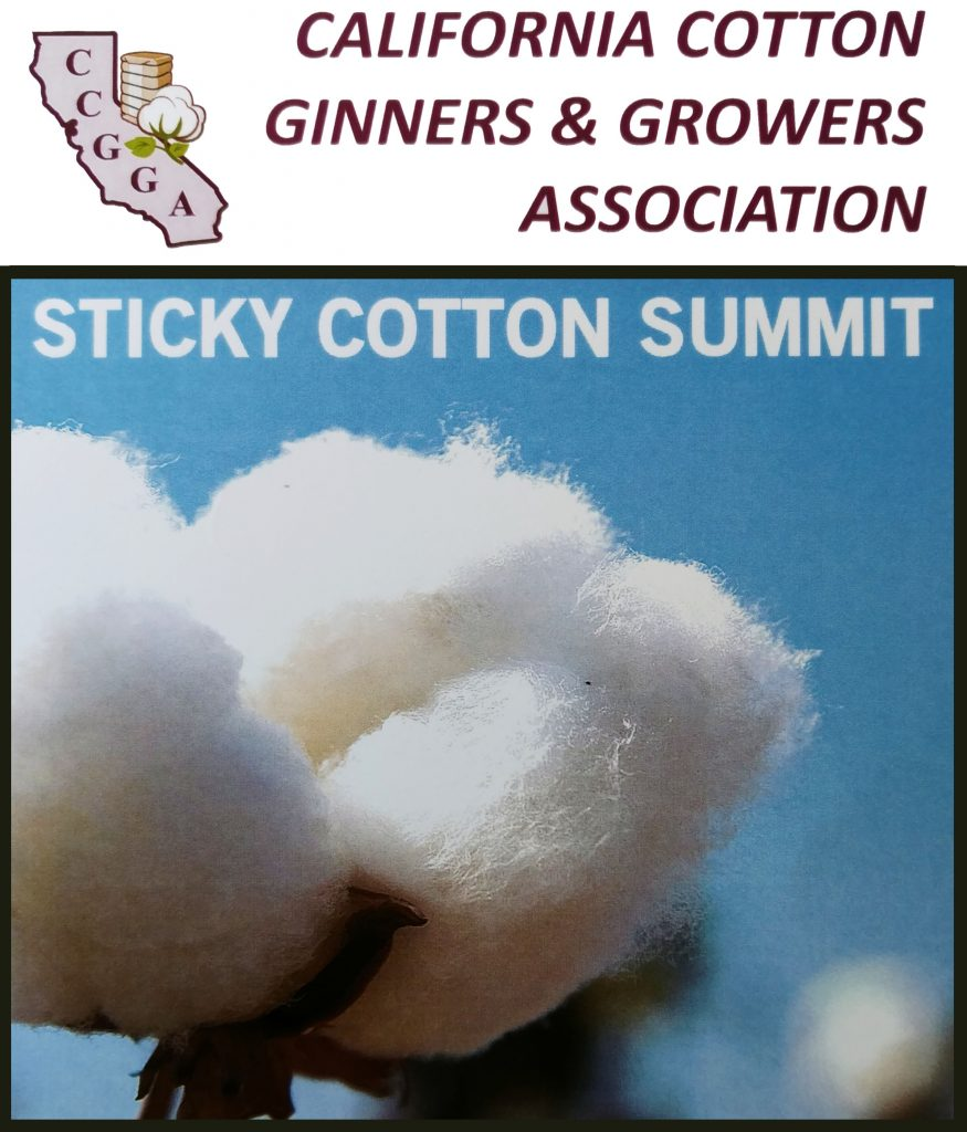 California Industry Aggressively Confronting Sticky Cotton