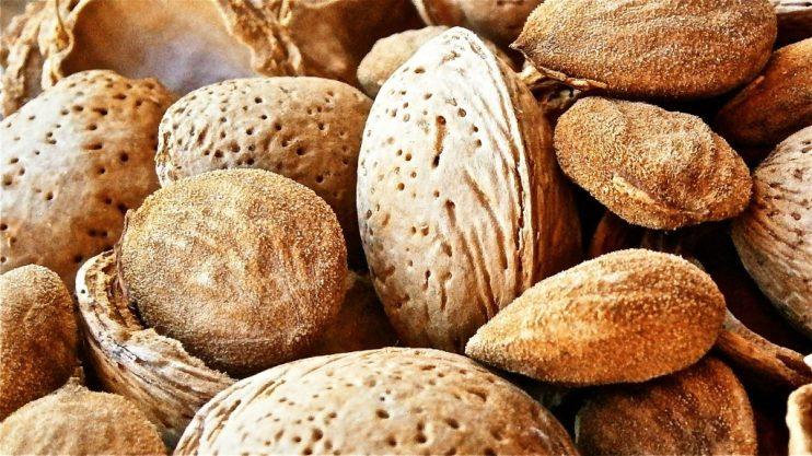 almond production