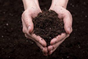 Healthy Soils Program