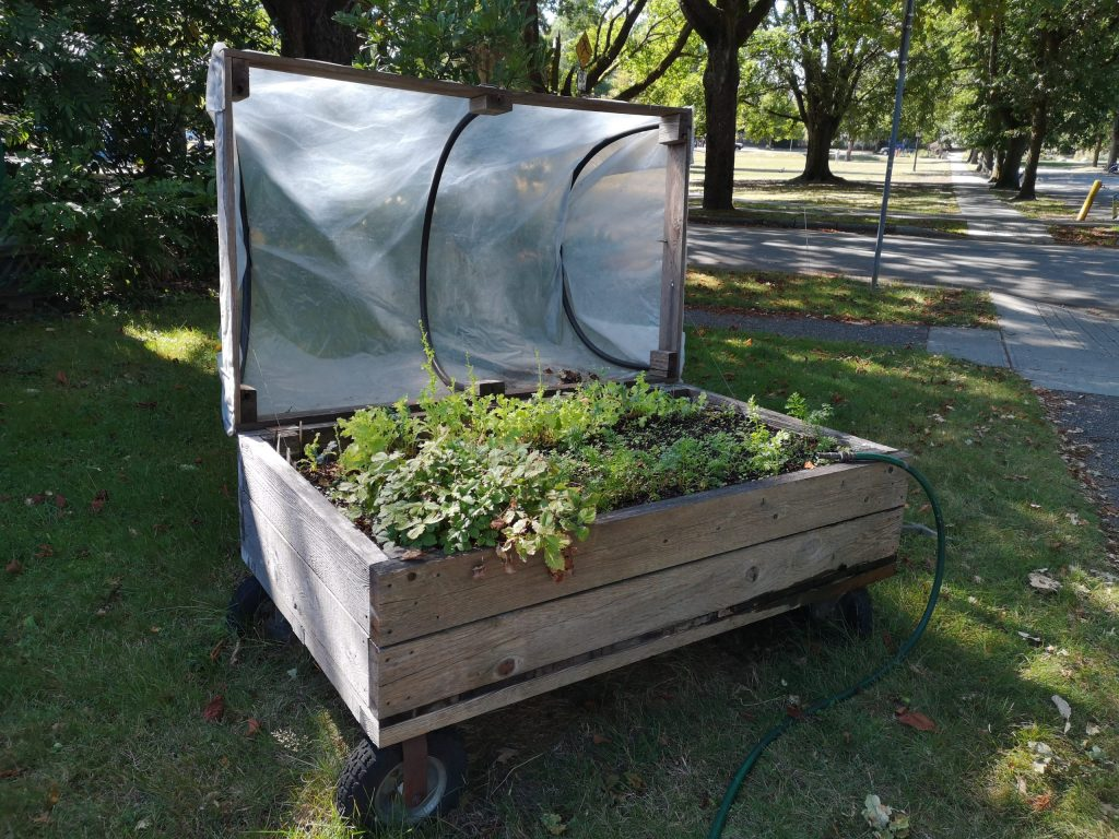 How To Build Raised Garden Beds Agnet West