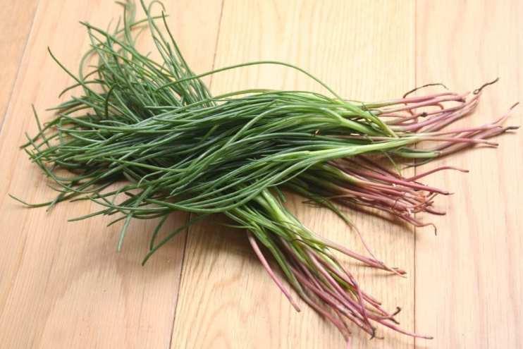 unique herb