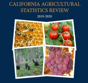 2019 Crop Report