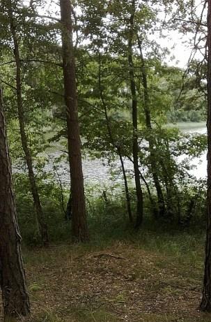 Bory Tucholskie, jezioro Skrzynka
