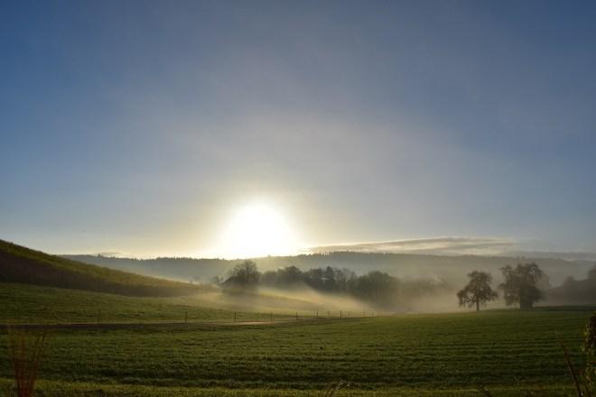 Живая Этика выбор эволюционного обновления Новая Эпоха Сатья Юга