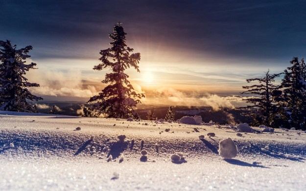 zima-sneg-derevia-solntse