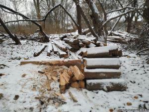 """""""Дом Рериха"""" растаскивают на дрова и стройматериалы"""