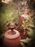 Figurine fontaine à oiseau, jardi Papa Maman Plancher bas, mai 2013