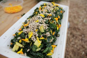 Kale Salad Recipe with Apples and Dried Sour Cherries