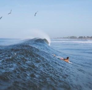 Driftwood Surfer - A Good Direction