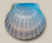 Passages Shell Urn