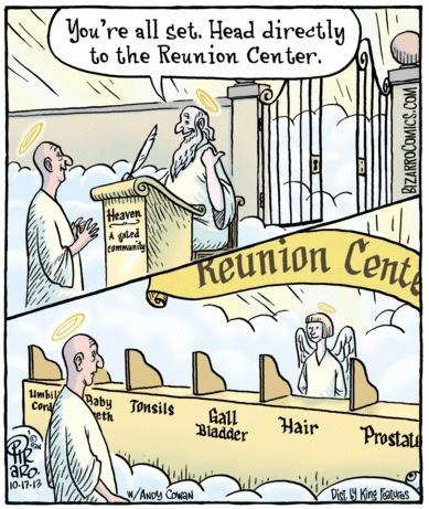 Bizarro Heavenly Reunion Center
