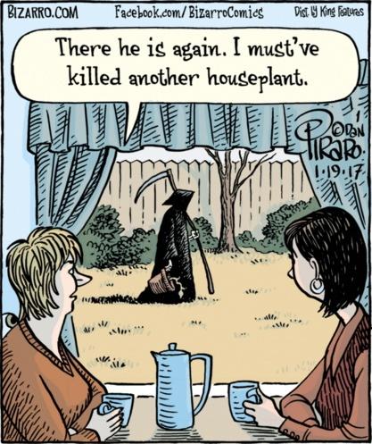 Bizarro Plant Grim Reaper