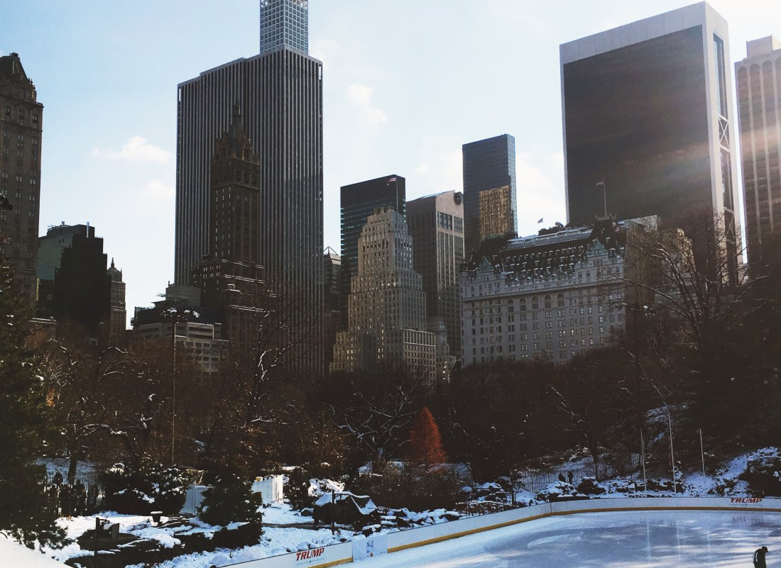 Wollman Rink Central Park, A Good Hue