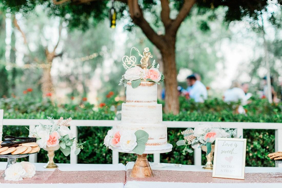 Semi Naked Wedding Cake | A Good Hue
