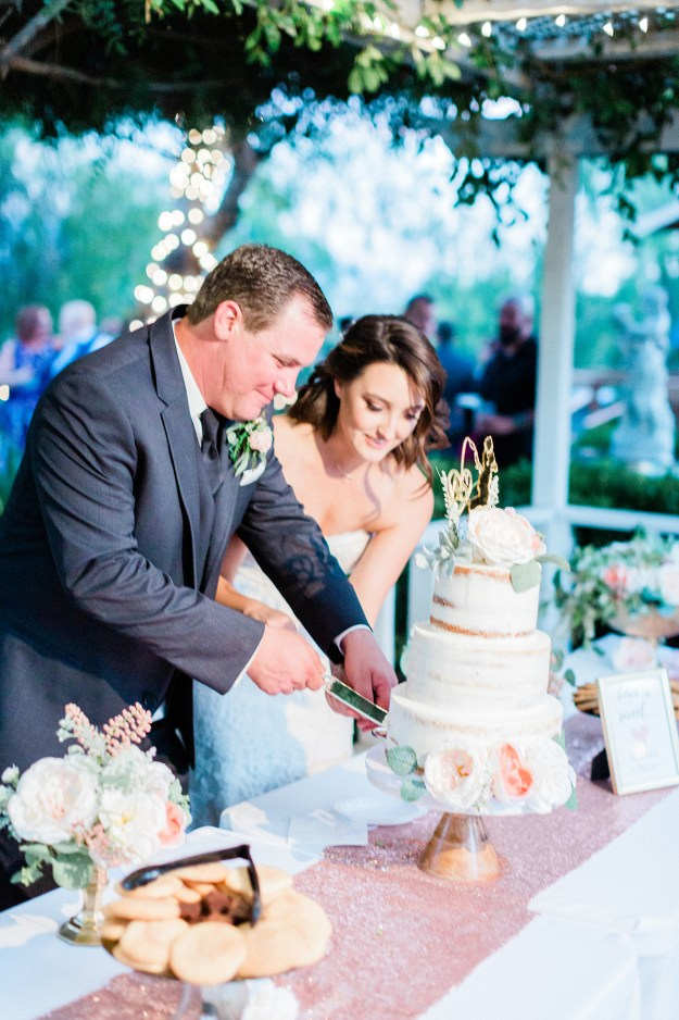 Wedding Cake Cutting   A Good Hue