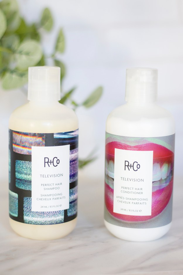 R+Co Television Shampoo and Conditioner | A Good Hue