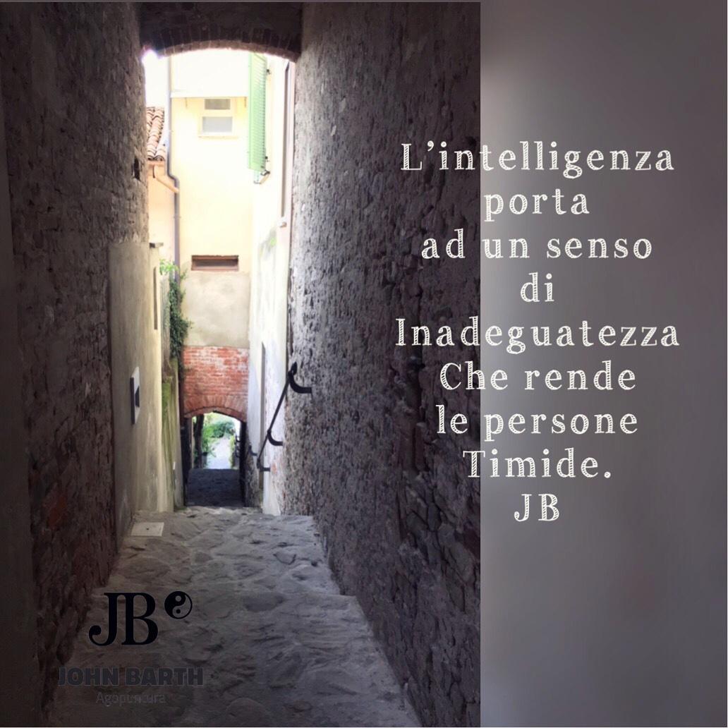 l'intelligenza porta ad un senso di inadeguatezza, che rende le persone timide. Quando il dubbio ti pervade, e l'unica certezza che hai è quella di non sapere nulla (il celebre sapere di non sapere), si diventa spesso timidi e si prova un certo senso di inadeguatezza. Anche se a volte è disarmante, è segno di intelligenza.